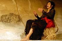 Premiérou hry Slaměná židle od skotské autorky Sue Glover přispělo liberecké Divadlo F. X. Šaldy k rozšíření obzoru současného tuzemského divadla. Stalo se totiž první scénou v republice, která hru nastudovala.