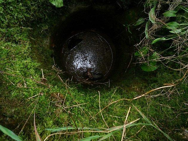 Mříží do pět metrů hluboké studny propadl pes v Jiřetíně.
