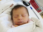 TEREZA KOMÁRKOVÁ Narodila se 3. února v liberecké porodnici mamince Olze Komárkové z Jablonce nad Nisou. Vážila 2,18 kg.