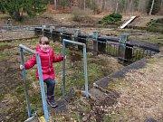 Na lesním koupališti se učilo plavat několik generací dětí. Zavřelo se v roce 2007, po deseti letech by tak mělo být znovu napuštěno.