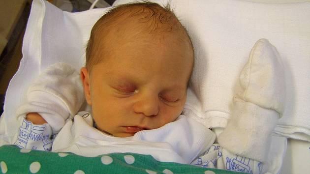 Petr Neumann se narodil 3. ledna v liberecké porodnici mamince Simoně Neumann z Liberce. Vážil 2,7 kg a měřil 49 cm.