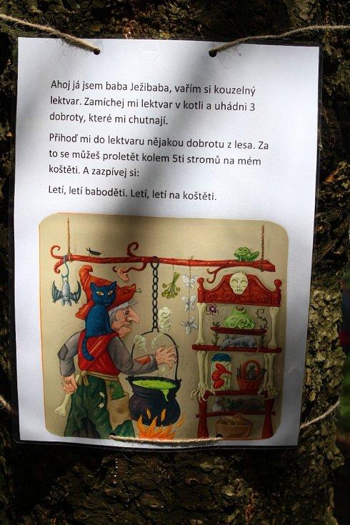 Kamzík poprvé zavítal do Liberce.