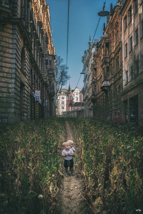 Příroda vs město aneb fotograf v karanténě.