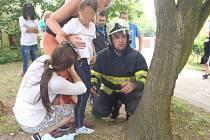 Zaklíněnou holčičku sundali ze stromu přivolaní hasiči.