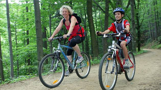 Jednou z oblíbených cest pro turisty i cyklisty na Frýdlantsku je Viničná stezka, pojmenována po úžlabině, které se podle stálé teploty vzduchu říkalo – ve vinném sklepě.
