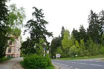 TADY, A NEBO NĚKDE JINDE má vzniknout hospic pro Liberecký kraj. Místo v Turnovské ulici na výjezdu z Jablonce na Prahu potřebuje hlavně vykácet. Další místa jsou ve hře, letos ale hospic nevznikne.