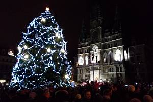 Rozsvícení vánočního stromu před libereckou radnicí.