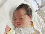 LE NGOC AN Narodila se 17. června v liberecké porodnici mamince le Thi Huong z Liberce. Vážila 3,06 kg a měřila 48 cm.