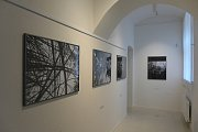 Výstava fotografií Michaela Čtveráčka.