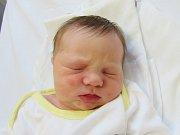 VIKTORIE KELLEROVÁ Narodila se 4. dubna v liberecké porodnici mamince Kláře Kellerové z Liberce. Vážila 3,42 kg a měřila 50 cm.