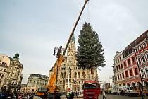 Na náměstí dr. Edvarda Beneše už stojí vánoční strom.