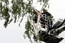 12 ZÁSAHŮ. Popadané stromy tvořily více jak polovinu ze všech událostí.