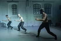 Taneční soubor Dekkadancers je složený ze špičkových tanečníků národních baletních scén v Praze, Brně, Mnichově či baletní Mekce Moskvě v čele s Ondřejem Vinklátem.