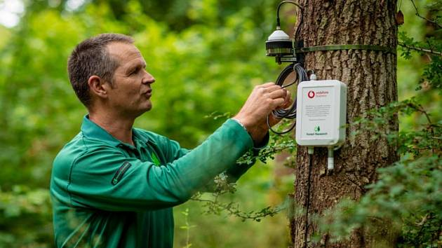 Monitorování vlivu klimatických změn na lesy ve Velké Británii.