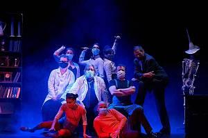 Divadlo F. X. Šaldy v Liberci spustilo on-line divadelní seriál Operace Archa. Je to bláznivá komediální fikce, ve které jde o záchranu celého lidstva. Vše se odehrává v Liberci, zejména na Technické univerzitě a na radnici.