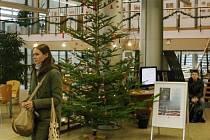 Norské dny v liberecké knihovně