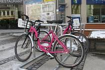 Ilustrační snímek. Růžová kola společnosti Rekola v Liberci.