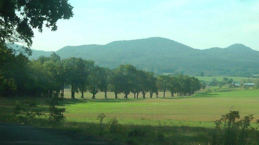 KRAJINU PO BITVĚ připomíná teď cesta mezi Raspenavou a Krásným Lesem. Dělníci už pokáceli přes 300 jasanů, které tvořily tzv. Kočárovou alej.