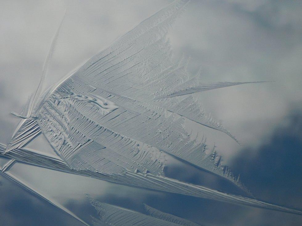 Ledový motýl.