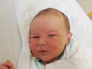 VÍT HORYNA Narodil se 8. července v liberecké porodnici mamince Anežce Horynové z Liberce. Vážil 4,52 kg a měřil 54 cm.