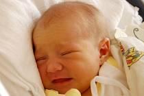ZORICA STEHLÍKOVÁ. Narodila se 1. srpna v liberecké porodnici mamince Tereze Stehlíkové z Raspenavy. Měřila 50 cm a vážila 3,32 kg.