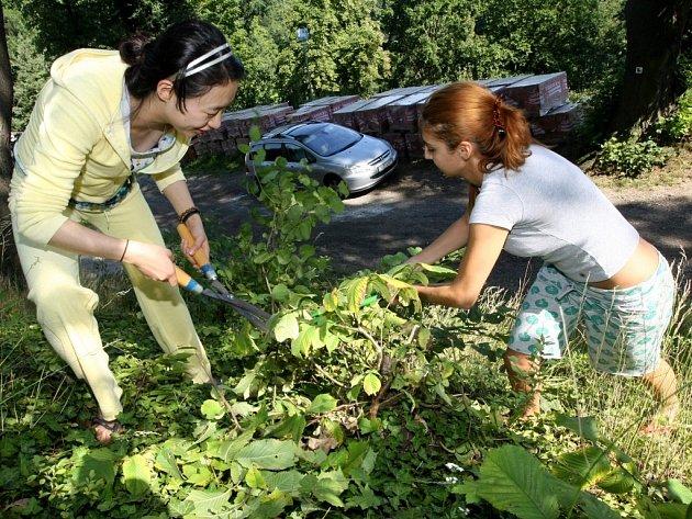 Turkyně Gülendam Ata spolu s Korejkou Sohee Won (ve žlutém) odtsraňují náletové křoviny.
