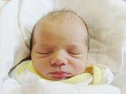 MARTIN DMYTRASH Narodil se 25. dubna v liberecké porodnici mamince Olhe Dmytrash z Liberce. Vážil 3,12 kg a měřil 52 cm.