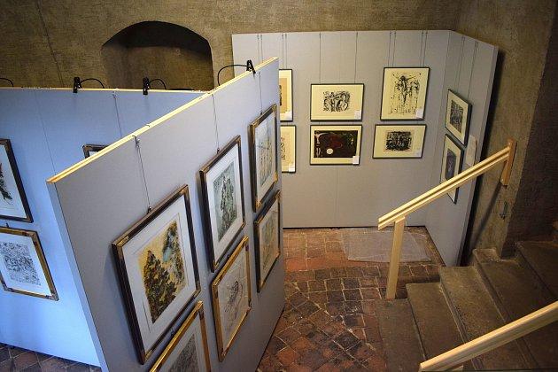 VNěmecku začala výstava grafických listů Salvadora Dalího.