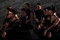 SUGESTIVNÍ, HYPNOTIZUJÍCÍ A PODMANIVÍ. Členové baletního souboru libereckého divadla F.X. Šaldy během natáčení reklamního spotu pro indický Bollywood využili veškerý svůj umělecký potenciál.