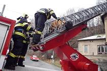 K psovi uvězněnému na střeše ve výšce deseti metrů pomohli až hasiči.