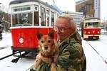 Svézt se historickou tramvají, typu 6MT z roku 1953, mohli zájemci na velikonoční pondělí 1. dubna 2013 na trase Liberec – Jablonec nad Nisou. Tento den to bylo právě čtyřicet let od poslední jízdy.