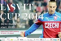 LASVIT CUP 2014