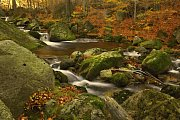 Podzimní potok.