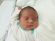 ADAM KOŠUN  Narodil se 31. října v liberecké porodnici rodičům Petře Košunové a Janu Balogovi z Frýdlantu v Čechách. Vážil 3,68 kg a měřil 50 cm.