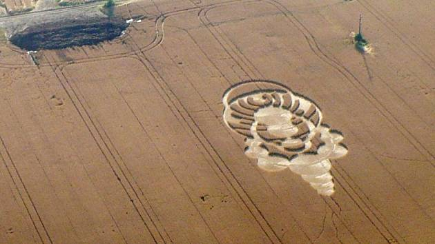 Kruhy v obilí na Sychrově