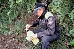 Městská policie v liberci se opět zapojila do akce Jehla, v rámci které se snaží vyčistit město od infekčního materiálu.