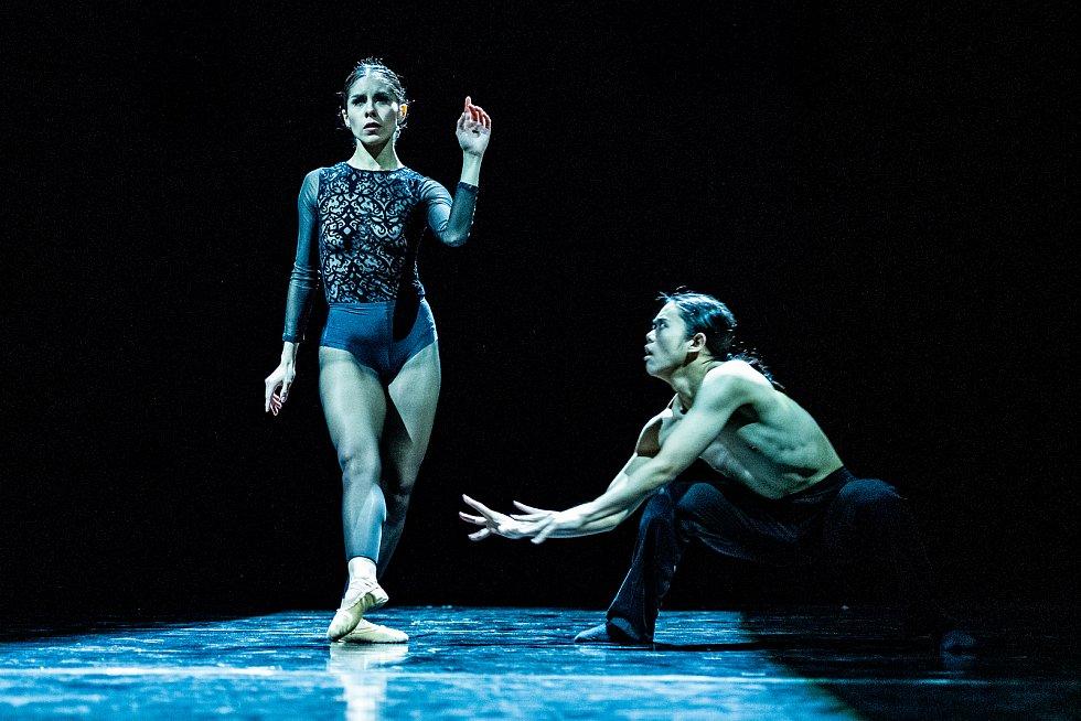 Mezinárodní den tance oslaví on-line.