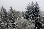 Sníh v Novém Městě pod Smrkem