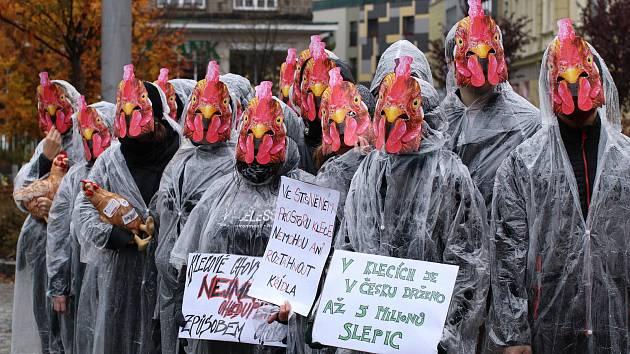 Členové liberecké pobočky Obrazu v sobotu na Soukenném náměstí upozorňovali na problematiku klecových chovů.