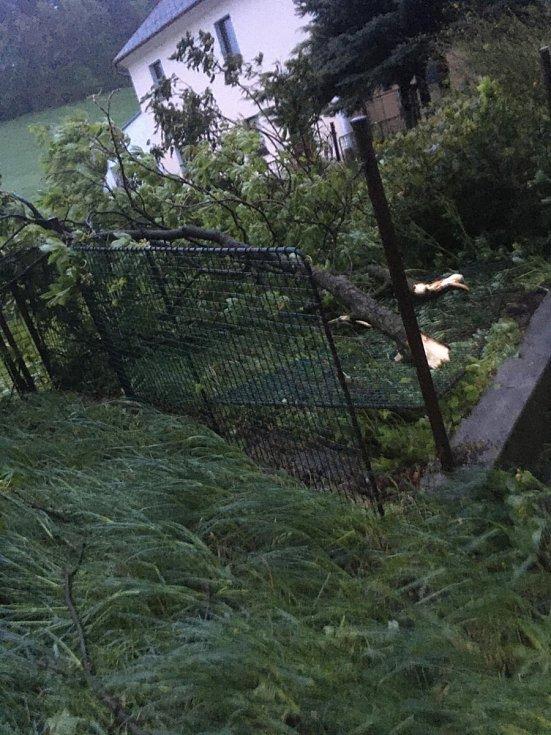 Zlomený strom v Petrašovicích.