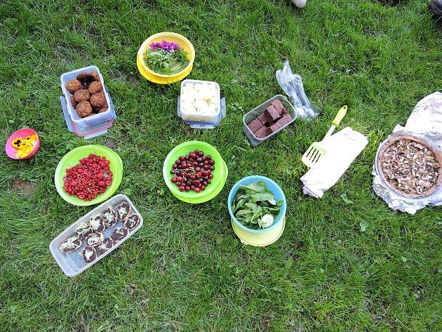 Další veganský piknik proběhne ve středu 8.srpna vparku vBudyšínské ulici nad Tržním náměstí. Zváni jsou všichni, donesené jídlo ale nesmí obsahovat žádné živočišné složky, tedy maso, mléko, vejce a výrobky znich a med.