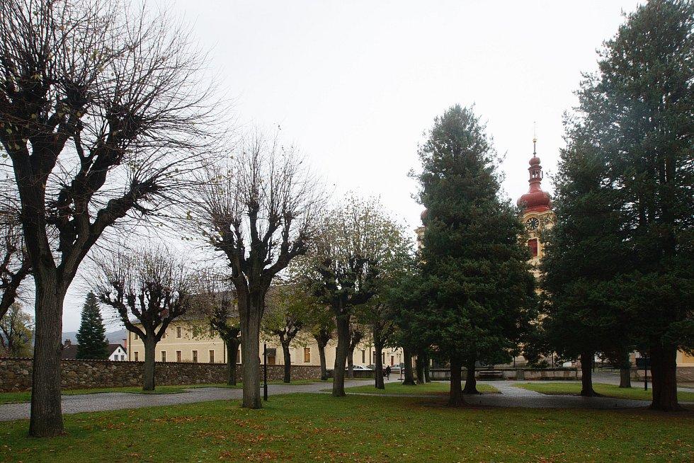 Kácení stromů před kostelem Navštívení Panny Marie v Hejnicích.