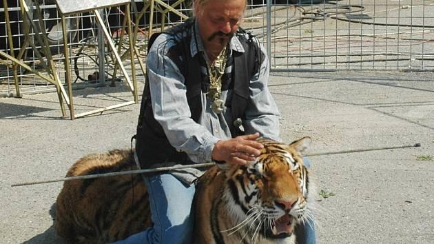 Principál Jaromír Joo zkrotil svého odchovance Bornea v kleci u cirkusového šapitó.