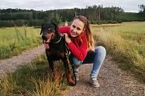 S nouzovým stavem došlo ke zvýšení zájmu o adopce opuštěných zvířat