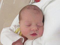 BEATA HOFFMANNOVÁ Narodila se 6. listopadu v liberecké porodnici mamince Lucii Adamové z Doubí u Turnova. Vážila 3,14 kg a měřila 48 cm.