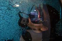 Pokus o překonání největší koncentrace potápěčů v potápěčské věži proběhl 7. října v plaveckém bazénu v Liberci.