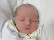 FRANTIŠEK ŠVOMA Narodil se 10. července v liberecké porodnici mamince Žanetě Nagyové z Liberce. Vážil 3,10 kg a měřil 50 cm.
