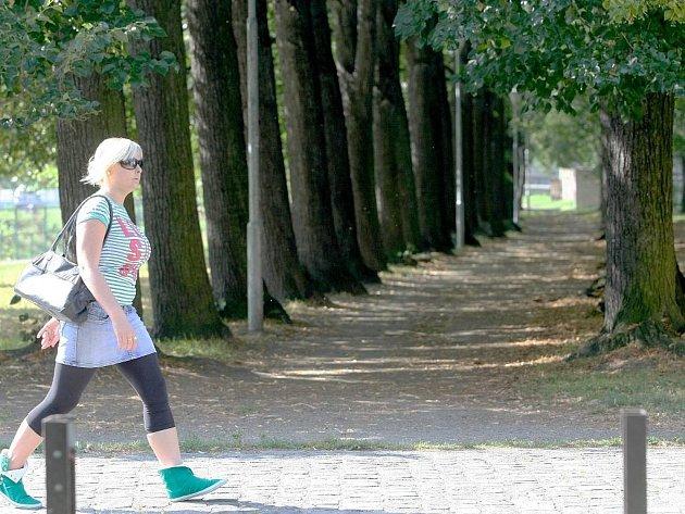 Lipová alej v parku na nábřeží Smědé ve Frýdlantě