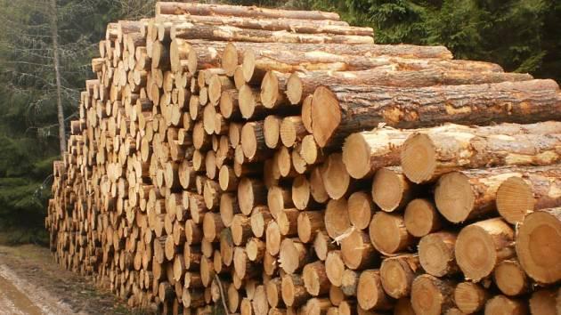 Těží se ve velkém. Lesníci stále zpracovávají kalamitní dřevo, mezi lidmi je o ně velký zájem.