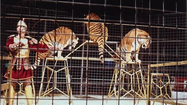 Národní cirkus Jo-Joo